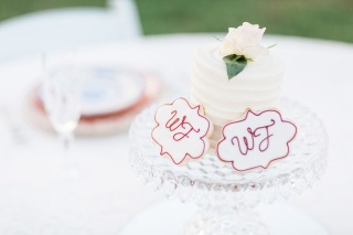 Styled Shoot (Cake & Cookies by Madbatter Bakery, Ardmore)